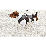 Trekking Dog Harness