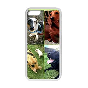 Lovely Dogs Cell Phone Case for Iphone 5C