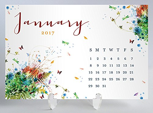 Rainbow Watercolor Floral Desk Calendar with Clear Acrylic Stand Butterfly Garden Planner Cards Office Gift 4 inches x 6 inches - Desk Calendars Shop