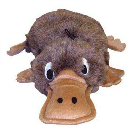 Kyjen Egg Babies Dog Toy, Original Series, Platypus, My Pet Supplies