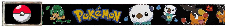 Pokemon Animated TV Series Fire & Ice Pokemon Logo Web Belt Buckle Down