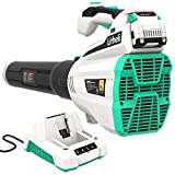 LiTHELi 40V 480CFM 92MPH Leaf Blower with Brushless Motor, 2.5AH Battery and Charger