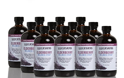 Norm's Farms Natural and Soothing Elderberry Wellness Syrup, 8 Ounce Jar, Case of 12
