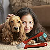 PetGroom, Pet Nail Clipper / Trimmer - Best Professional Dog Nail Trimmer with Nail File Suits Large or Small Dogs & Cats - | Safety Guard to Prevent Over-Cutting of Toenails