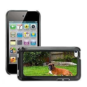 GoGoMobile Etui Housse Coque de Protection Cover Rigide pour // M00117997 Raza del perro del boxeador canino // Apple ipod Touch 4 4G 4th
