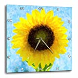 3dRose Florene Sunflower Proud Wall Clock, 10 by 10-Inch Review