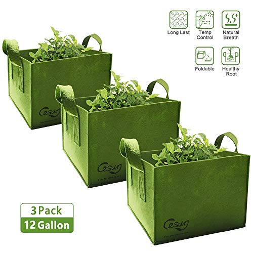 Cesun Square Grow Planter Bag Premium 400 Gram Thickened Fabric Smart Pots 12 Gallon Aeration Fabric Cube with X Stitching Reinforced Handles (12 Gal Green Cube) ()