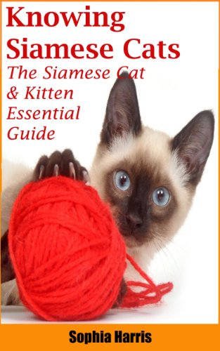 Knowing Siamese Cats: THE SIAMESE CAT & KITTEN ESSENTIAL GUIDE.