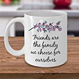 Friendship Coffee Mug ~ Friends Are The Family - Best Reviews Guide