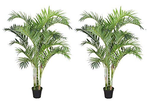 Tropical Plant Nursery (Pack Of Two(2) AMERIQUE Gorgeous 6 Feet Tropical Palm Trees Artificial Silk Plant with UV Protection, with Nursery Plastic Pots, Feel Real Technology, Super Quality)