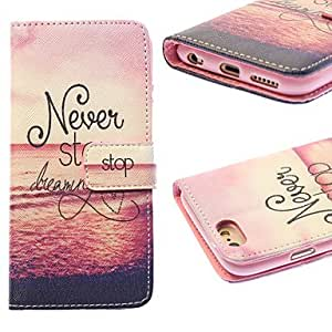 SHOUJIKE Setting Sun Painting PU Leather Falling Proof Case with Stand and Slot Card for iPhone 6