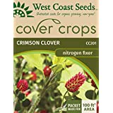 Cover Crop Seeds - Crimson Clover