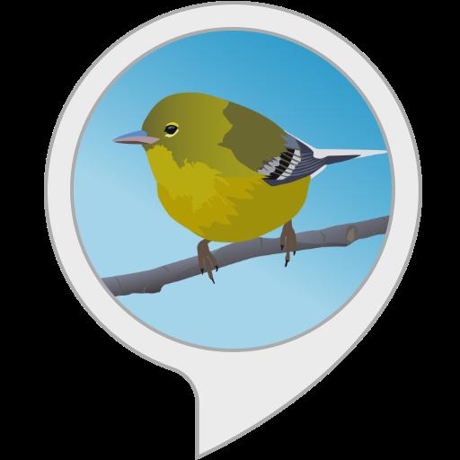 Sound Journey: 鳥のさえずり