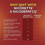 Nicorette Nicotine Gum 4 Milligram Stop Smoking