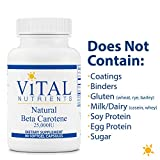 Vital Nutrients - Natural Beta Carotene - Precursor to Vitamin A - Antioxidant - Vision, Skin, and Reproductive Health Support - 90 Softgel Capsules per Bottle - 25,000 IU