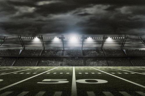 American Football Stadium Rendering 50 Yard Line Mural Giant Poster 54x36 inch
