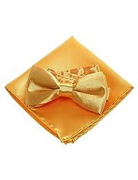 Boys Bow Ties Pocket Square Set - Pre Bow Tie Handkerchief for kids, Festival (Gold)