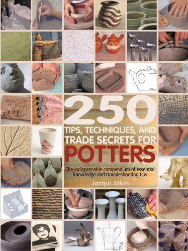 (250 Tips, Techniques, and Trade Secrets for Potters )