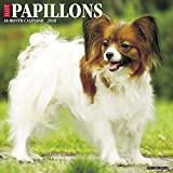 Just Papillons 2018 Wall Calendar (Dog Breed Calendar)