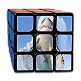 Shark Out of The Water Fashion Rubik's Cube Personal Custom 3x3x3 Magic Square Puzzles Finger Game Portable Toys-Anti Stress Practice Patience for Anti-Anxiety Adults Youth