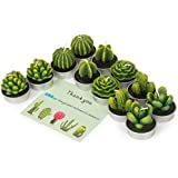 Cactus Tealight Candles, AMASKY Handmade Delicate Succulent Cactus Candles for Valentine's day Birthday Party Wedding Spa Home Decoration, 12 Pcs in Pack. (12)