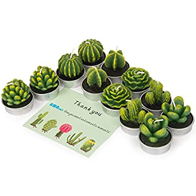 AMASKY Cactus Tealight Candles, Handmade Delicate Succulent Cactus Candles for Valentine's Day Birthday Party Wedding Spa Home Decoration (12 Packs) - [Cute & Multi-Purpose] The candle has 12 pcs different vivid and lifelike cactus shape, standard tealight size, perfect for home decoration, birthday party, wedding venue ornament, festival party decoration etc. [Environmental & Long Life] Made of quality paraffin material, it won't generate acrid smoke. Each candle can steady burning to 4-5 hours. can be re-lighted many times at your convenience. [Non-Spilling Design]Non-spilling designed, different cactus shaped candles with Non-spilling metal holder. - living-room-decor, living-room, candles - 51s 7wIMvkL. SS400  -
