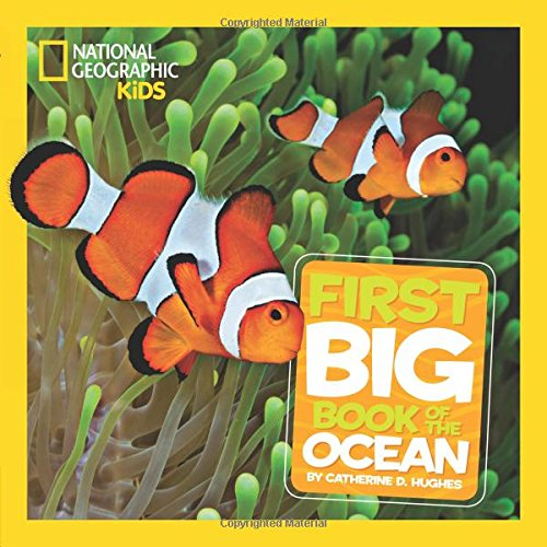 National Geographic Little Kids First Big Book of the Ocean (National Geographic Little Kids First Big Books) Lifes Little Book