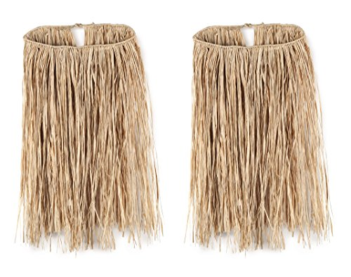 Beistle S50432NAZ2, 2 Piece Teen Raffia Hula Skirts, 28