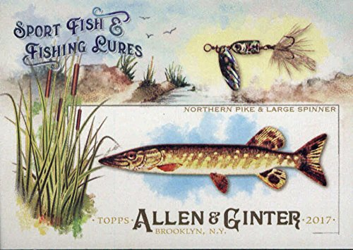2017 Allen and Ginter Sport Fish and Lures #SFL-1 Northern Pike