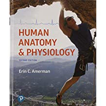 Human Anatomy & Physiology Plus Mastering A&P with Pearson eText -- Access Card Package (2nd Edition)