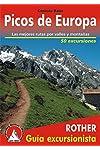 https://libros.plus/picos-de-europa-las-mejores-rutas-por-valles-y-montanas-50-excursiones-guia-rother/