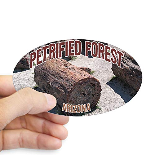CafePress Petrified Forest National Park Oval Sticker Oval Bumper Sticker, Euro Oval Car Decal