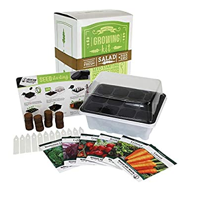 Indoor Garden Seed Starter Kits - Grow Salsa & Salad Vegetables & More - Start for Outdoor Growing or Indoor Container Gardening: Onion, Tomato, Cilantro, Lettuce, More
