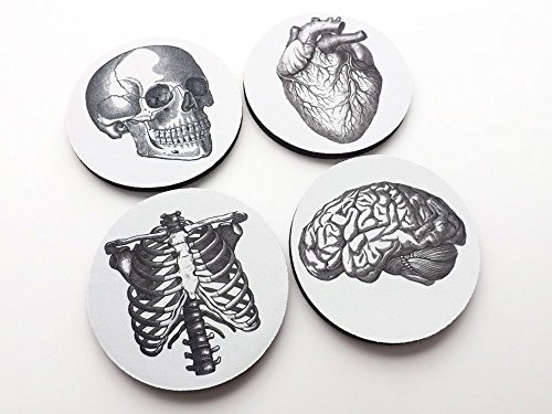 (Medical Anatomy set of 4 or 6 Coasters 3.5 inch drink beverage skull brain hand anatomical heart)