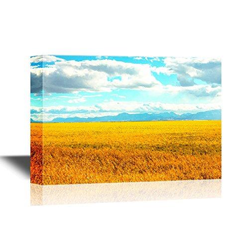 Landscape Wild Fields in Autumn