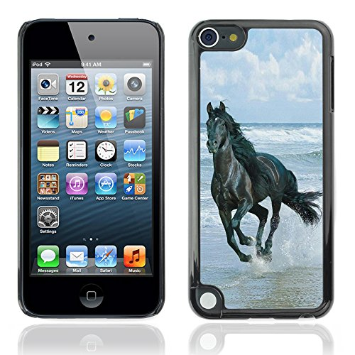 (Graphic4You Black Horse Running On The Beach Design Hard Case Cover for Apple iPod Touch 5th Generation 5G)
