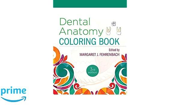 dental anatomy coloring book 3e 9780323473453 medicine health science books amazoncom - Dental Anatomy Coloring Book