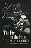 The Fire in the Flint (Brown Thrasher Books)