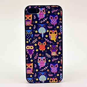 HP DFPretty Colourful Owls Pattern Hard Case for iPhone 5/5S