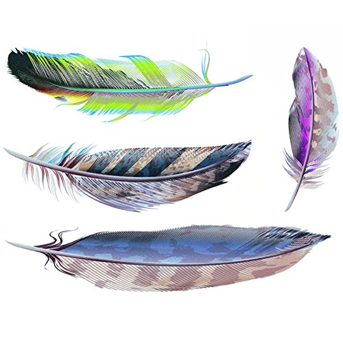 Auto Window Sticker - HaloVa Car Stickers, Scratches Decal for Auto Vehicle Car Truck Bumper Window Decor, Feather(set of 4