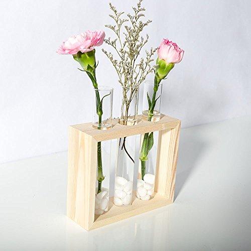 Mkono Wall Hanging Test Tube Planter Modern Flower Bud