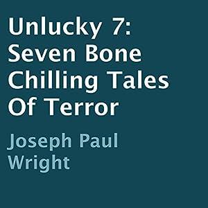 Unlucky 7 Audiobook