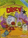 Fantastic Adventures of Dizzy for the Nintendo NES