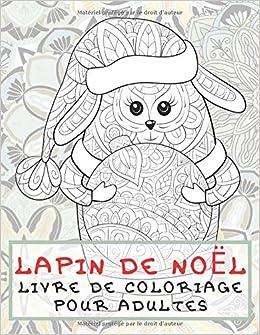 Lapin De Noel Livre De Coloriage Pour Adultes French Edition Lamontagne Louna 9798630643711 Amazon Com Books