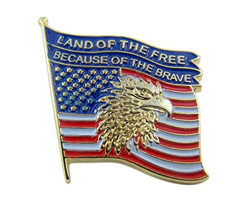 Patriotic Gold Tone Enameled Land of the Free United States Flag Lapel Pin, 7/8 Inch
