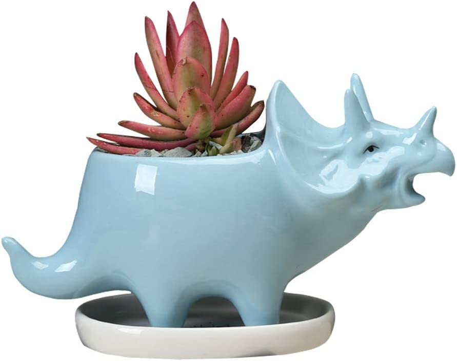 Gemseek Cute Dinosaur Succulent Planter Pot with Drainage Tray, Blue Ceramic Cactus/Flower Container, Animal Bonsai Holder for Indoor Plants