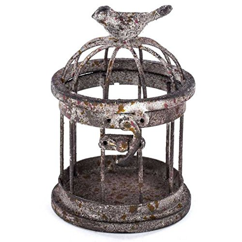Rusty Small Iron Bird Cage with Bird on (Small Decorative Bird Cages)