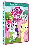 """Afficher """"my little Pony, les amies c'est magique n° 9 Vent de folie à Ponyville"""""""
