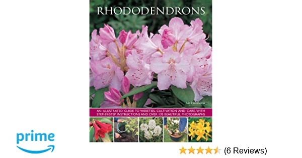 Rhododendrons An Illustrated Guide To Varieties Cultivation And
