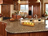 Countertop Choices Homeowner's 1st Choice Granite Countertop Pro-Style Cleaner & Polishing Powder Restoration Kit